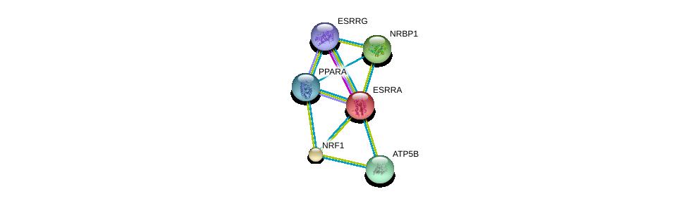 http://string-db.org/version_10/api/image/networkList?limit=0&targetmode=proteins&caller_identity=gene_cards&network_flavor=evidence&identifiers=9606.ENSP00000000442%0d%0a9606.ENSP00000386171%0d%0a9606.ENSP00000233557%0d%0a9606.ENSP00000223190%0d%0a9606.ENSP00000262030%0d%0a9606.ENSP00000262735%0d%0a