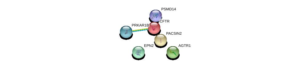 http://string-db.org/version_10/api/image/networkList?limit=0&targetmode=proteins&caller_identity=gene_cards&network_flavor=evidence&identifiers=9606.ENSP00000003084%0d%0a9606.ENSP00000320543%0d%0a9606.ENSP00000273430%0d%0a9606.ENSP00000386541%0d%0a9606.ENSP00000353415%0d%0a9606.ENSP00000263246%0d%0a