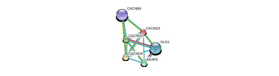 http://string-db.org/version_10/api/image/networkList?limit=0&targetmode=proteins&caller_identity=gene_cards&network_flavor=evidence&identifiers=9606.ENSP00000005284%0d%0a9606.ENSP00000345731%0d%0a9606.ENSP00000300105%0d%0a9606.ENSP00000438949%0d%0a9606.ENSP00000262138%0d%0a9606.ENSP00000315615%0d%0a