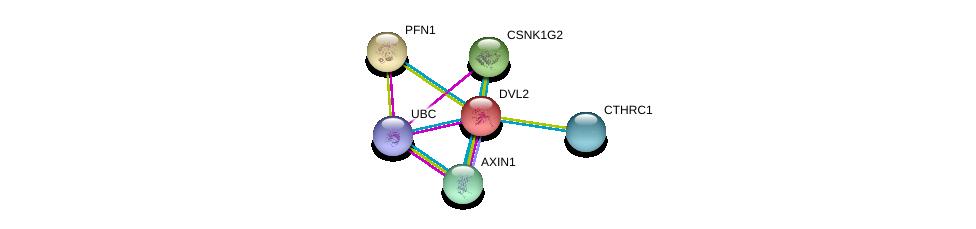 http://string-db.org/version_10/api/image/networkList?limit=0&targetmode=proteins&caller_identity=gene_cards&network_flavor=evidence&identifiers=9606.ENSP00000005340%0d%0a9606.ENSP00000344818%0d%0a9606.ENSP00000262320%0d%0a9606.ENSP00000330523%0d%0a9606.ENSP00000255641%0d%0a9606.ENSP00000225655%0d%0a