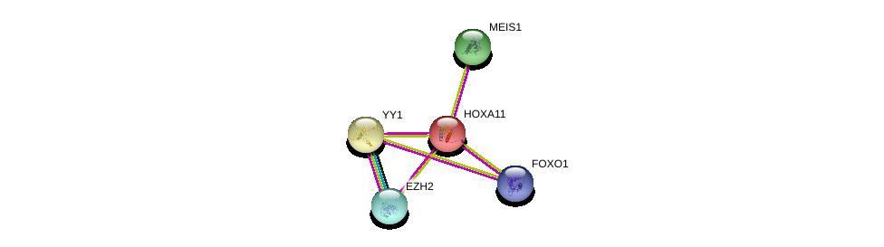http://string-db.org/version_10/api/image/networkList?limit=0&targetmode=proteins&caller_identity=gene_cards&network_flavor=evidence&identifiers=9606.ENSP00000006015%0d%0a9606.ENSP00000272369%0d%0a9606.ENSP00000320147%0d%0a9606.ENSP00000262238%0d%0a9606.ENSP00000262238%0d%0a9606.ENSP00000368880%0d%0a