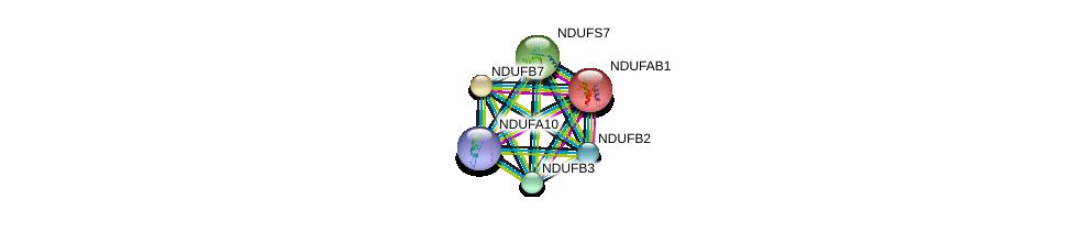 http://string-db.org/version_10/api/image/networkList?limit=0&targetmode=proteins&caller_identity=gene_cards&network_flavor=evidence&identifiers=9606.ENSP00000007516%0d%0a9606.ENSP00000215565%0d%0a9606.ENSP00000233627%0d%0a9606.ENSP00000237889%0d%0a9606.ENSP00000247866%0d%0a9606.ENSP00000252711%0d%0a