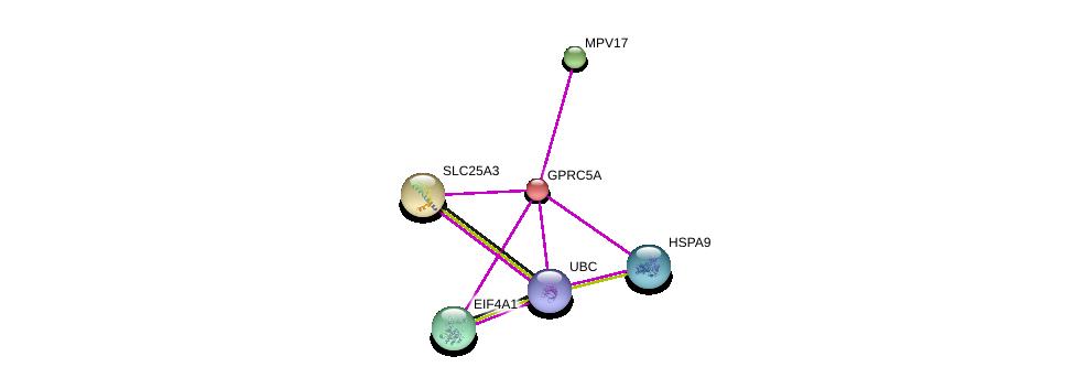 http://string-db.org/version_10/api/image/networkList?limit=0&targetmode=proteins&caller_identity=gene_cards&network_flavor=evidence&identifiers=9606.ENSP00000014914%0d%0a9606.ENSP00000344818%0d%0a9606.ENSP00000228318%0d%0a9606.ENSP00000233545%0d%0a9606.ENSP00000293831%0d%0a9606.ENSP00000297185%0d%0a