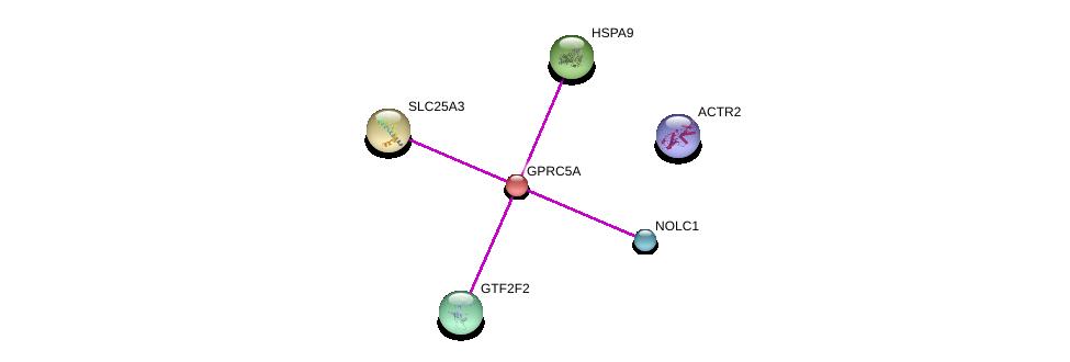 http://string-db.org/version_10/api/image/networkList?limit=0&targetmode=proteins&caller_identity=gene_cards&network_flavor=evidence&identifiers=9606.ENSP00000014914%0d%0a9606.ENSP00000367220%0d%0a9606.ENSP00000228318%0d%0a9606.ENSP00000297185%0d%0a9606.ENSP00000359024%0d%0a9606.ENSP00000340823%0d%0a
