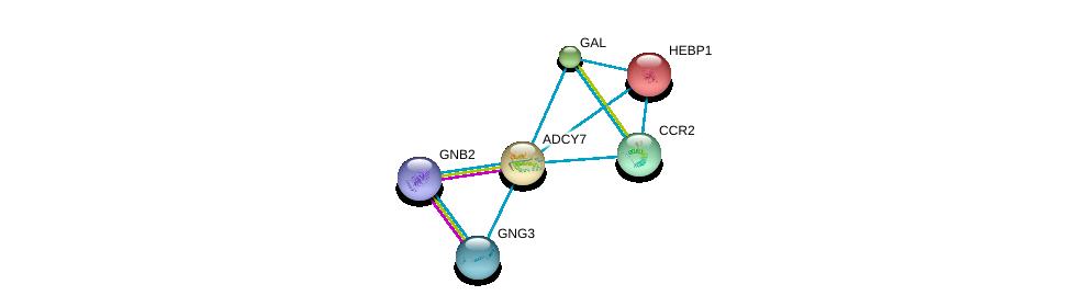 http://string-db.org/version_10/api/image/networkList?limit=0&targetmode=proteins&caller_identity=gene_cards&network_flavor=evidence&identifiers=9606.ENSP00000014930%0d%0a9606.ENSP00000305260%0d%0a9606.ENSP00000294117%0d%0a9606.ENSP00000254235%0d%0a9606.ENSP00000292301%0d%0a9606.ENSP00000265643%0d%0a