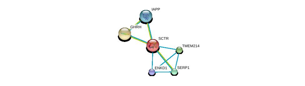 http://string-db.org/version_10/api/image/networkList?limit=0&targetmode=proteins&caller_identity=gene_cards&network_flavor=evidence&identifiers=9606.ENSP00000019103%0d%0a9606.ENSP00000237527%0d%0a9606.ENSP00000238788%0d%0a9606.ENSP00000239944%0d%0a9606.ENSP00000240652%0d%0a9606.ENSP00000243878%0d%0a