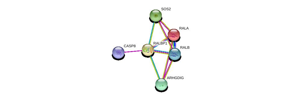 http://string-db.org/version_10/api/image/networkList?limit=0&targetmode=proteins&caller_identity=gene_cards&network_flavor=evidence&identifiers=9606.ENSP00000019317%0d%0a9606.ENSP00000272519%0d%0a9606.ENSP00000005257%0d%0a9606.ENSP00000351273%0d%0a9606.ENSP00000216373%0d%0a9606.ENSP00000219409%0d%0a