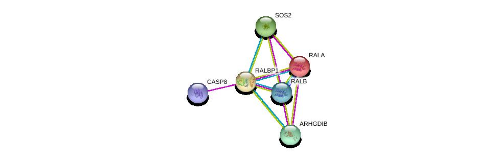 http://string-db.org/version_10/api/image/networkList?limit=0&targetmode=proteins&caller_identity=gene_cards&network_flavor=evidence&identifiers=9606.ENSP00000019317%0d%0a9606.ENSP00000272519%0d%0a9606.ENSP00000005257%0d%0a9606.ENSP00000351273%0d%0a9606.ENSP00000216373%0d%0a9606.ENSP00000228945%0d%0a