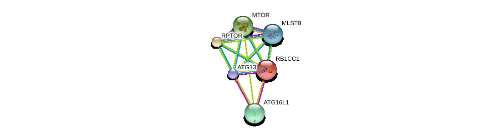 http://string-db.org/version_10/api/image/networkList?limit=0&targetmode=proteins&caller_identity=gene_cards&network_flavor=evidence&identifiers=9606.ENSP00000025008%0d%0a9606.ENSP00000375872%0d%0a9606.ENSP00000380313%0d%0a9606.ENSP00000354558%0d%0a9606.ENSP00000307272%0d%0a9606.ENSP00000432412%0d%0a