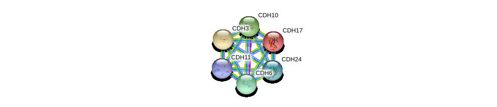 http://string-db.org/version_10/api/image/networkList?limit=0&targetmode=proteins&caller_identity=gene_cards&network_flavor=evidence&identifiers=9606.ENSP00000027335%0d%0a9606.ENSP00000264012%0d%0a9606.ENSP00000264463%0d%0a9606.ENSP00000265071%0d%0a9606.ENSP00000267383%0d%0a9606.ENSP00000268603%0d%0a