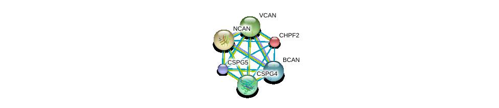 http://string-db.org/version_10/api/image/networkList?limit=0&targetmode=proteins&caller_identity=gene_cards&network_flavor=evidence&identifiers=9606.ENSP00000035307%0d%0a9606.ENSP00000331210%0d%0a9606.ENSP00000312506%0d%0a9606.ENSP00000373244%0d%0a9606.ENSP00000265077%0d%0a9606.ENSP00000252575%0d%0a