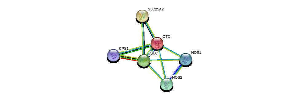 http://string-db.org/version_10/api/image/networkList?limit=0&targetmode=proteins&caller_identity=gene_cards&network_flavor=evidence&identifiers=9606.ENSP00000039007%0d%0a9606.ENSP00000239451%0d%0a9606.ENSP00000402608%0d%0a9606.ENSP00000337459%0d%0a9606.ENSP00000327251%0d%0a9606.ENSP00000253004%0d%0a