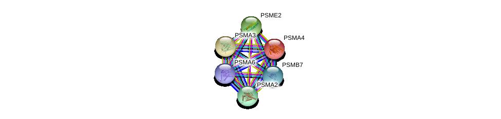 http://string-db.org/version_10/api/image/networkList?limit=0&targetmode=proteins&caller_identity=gene_cards&network_flavor=evidence&identifiers=9606.ENSP00000044462%0d%0a9606.ENSP00000216455%0d%0a9606.ENSP00000216802%0d%0a9606.ENSP00000223321%0d%0a9606.ENSP00000259457%0d%0a9606.ENSP00000261479%0d%0a