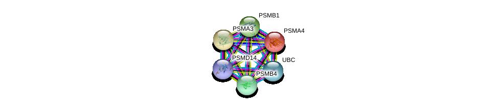 http://string-db.org/version_10/api/image/networkList?limit=0&targetmode=proteins&caller_identity=gene_cards&network_flavor=evidence&identifiers=9606.ENSP00000044462%0d%0a9606.ENSP00000290541%0d%0a9606.ENSP00000262193%0d%0a9606.ENSP00000216455%0d%0a9606.ENSP00000344818%0d%0a9606.ENSP00000386541%0d%0a