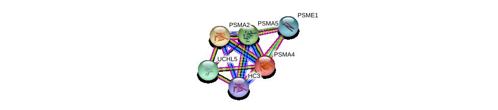 http://string-db.org/version_10/api/image/networkList?limit=0&targetmode=proteins&caller_identity=gene_cards&network_flavor=evidence&identifiers=9606.ENSP00000044462%0d%0a9606.ENSP00000356425%0d%0a9606.ENSP00000455744%0d%0a9606.ENSP00000223321%0d%0a9606.ENSP00000372155%0d%0a9606.ENSP00000271308%0d%0a