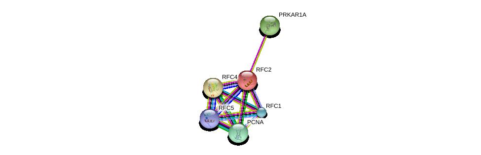 http://string-db.org/version_10/api/image/networkList?limit=0&targetmode=proteins&caller_identity=gene_cards&network_flavor=evidence&identifiers=9606.ENSP00000055077%0d%0a9606.ENSP00000351410%0d%0a9606.ENSP00000296273%0d%0a9606.ENSP00000408295%0d%0a9606.ENSP00000368438%0d%0a9606.ENSP00000371321%0d%0a
