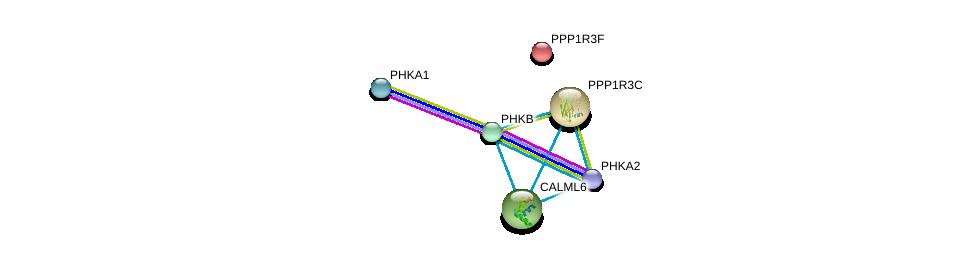 http://string-db.org/version_10/api/image/networkList?limit=0&targetmode=proteins&caller_identity=gene_cards&network_flavor=evidence&identifiers=9606.ENSP00000055335%0d%0a9606.ENSP00000304643%0d%0a9606.ENSP00000369274%0d%0a9606.ENSP00000362643%0d%0a9606.ENSP00000313504%0d%0a9606.ENSP00000238994%0d%0a