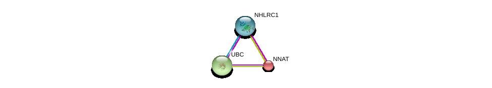 http://string-db.org/version_10/api/image/networkList?limit=0&targetmode=proteins&caller_identity=gene_cards&network_flavor=evidence&identifiers=9606.ENSP00000062104%0d%0a9606.ENSP00000345464%0d%0a9606.ENSP00000344818%0d%0a