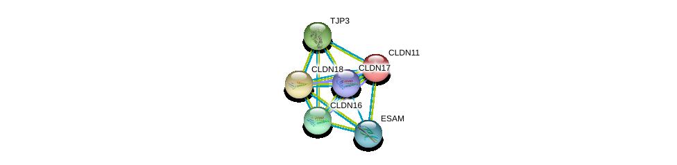 http://string-db.org/version_10/api/image/networkList?limit=0&targetmode=proteins&caller_identity=gene_cards&network_flavor=evidence&identifiers=9606.ENSP00000064724%0d%0a9606.ENSP00000183605%0d%0a9606.ENSP00000262968%0d%0a9606.ENSP00000264734%0d%0a9606.ENSP00000278927%0d%0a9606.ENSP00000286808%0d%0a