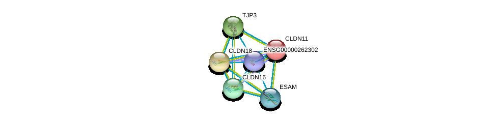 http://string-db.org/version_10/api/image/networkList?limit=0&targetmode=proteins&caller_identity=gene_cards&network_flavor=evidence&identifiers=9606.ENSP00000064724%0d%0a9606.ENSP00000460571%0d%0a9606.ENSP00000183605%0d%0a9606.ENSP00000262968%0d%0a9606.ENSP00000264734%0d%0a9606.ENSP00000278927%0d%0a