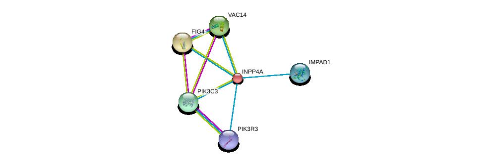 http://string-db.org/version_10/api/image/networkList?limit=0&targetmode=proteins&caller_identity=gene_cards&network_flavor=evidence&identifiers=9606.ENSP00000074304%0d%0a9606.ENSP00000230124%0d%0a9606.ENSP00000261776%0d%0a9606.ENSP00000262039%0d%0a9606.ENSP00000262644%0d%0a9606.ENSP00000262741%0d%0a