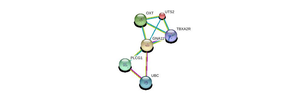 http://string-db.org/version_10/api/image/networkList?limit=0&targetmode=proteins&caller_identity=gene_cards&network_flavor=evidence&identifiers=9606.ENSP00000078429%0d%0a9606.ENSP00000344818%0d%0a9606.ENSP00000393333%0d%0a9606.ENSP00000054668%0d%0a9606.ENSP00000244007%0d%0a9606.ENSP00000217386%0d%0a