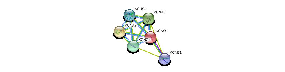 http://string-db.org/version_10/api/image/networkList?limit=0&targetmode=proteins&caller_identity=gene_cards&network_flavor=evidence&identifiers=9606.ENSP00000155840%0d%0a9606.ENSP00000337255%0d%0a9606.ENSP00000221444%0d%0a9606.ENSP00000252321%0d%0a9606.ENSP00000262916%0d%0a9606.ENSP00000265969%0d%0a