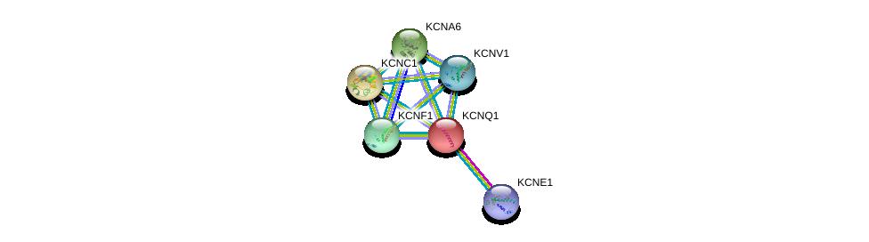http://string-db.org/version_10/api/image/networkList?limit=0&targetmode=proteins&caller_identity=gene_cards&network_flavor=evidence&identifiers=9606.ENSP00000155840%0d%0a9606.ENSP00000337255%0d%0a9606.ENSP00000265969%0d%0a9606.ENSP00000280684%0d%0a9606.ENSP00000295082%0d%0a9606.ENSP00000297404%0d%0a