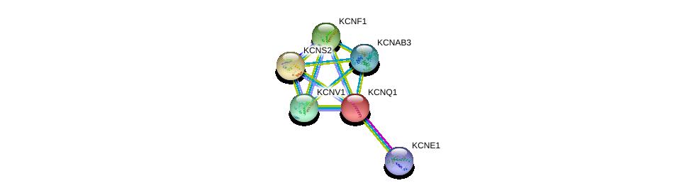 http://string-db.org/version_10/api/image/networkList?limit=0&targetmode=proteins&caller_identity=gene_cards&network_flavor=evidence&identifiers=9606.ENSP00000155840%0d%0a9606.ENSP00000337255%0d%0a9606.ENSP00000287042%0d%0a9606.ENSP00000295082%0d%0a9606.ENSP00000297404%0d%0a9606.ENSP00000302719%0d%0a