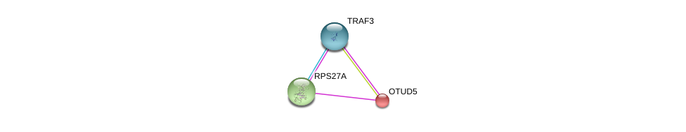 http://string-db.org/version_10/api/image/networkList?limit=0&targetmode=proteins&caller_identity=gene_cards&network_flavor=evidence&identifiers=9606.ENSP00000156084%0d%0a9606.ENSP00000272317%0d%0a9606.ENSP00000376500%0d%0a