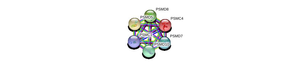 http://string-db.org/version_10/api/image/networkList?limit=0&targetmode=proteins&caller_identity=gene_cards&network_flavor=evidence&identifiers=9606.ENSP00000157812%0d%0a9606.ENSP00000210313%0d%0a9606.ENSP00000215071%0d%0a9606.ENSP00000217958%0d%0a9606.ENSP00000219313%0d%0a9606.ENSP00000261303%0d%0a