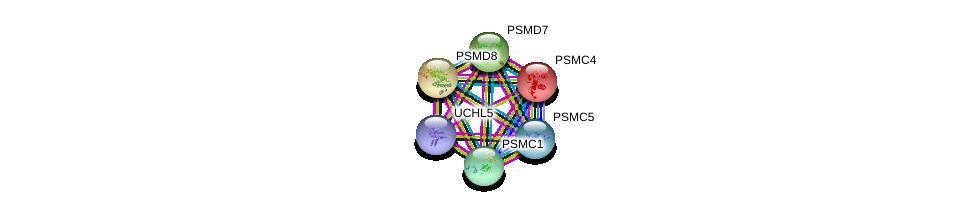 http://string-db.org/version_10/api/image/networkList?limit=0&targetmode=proteins&caller_identity=gene_cards&network_flavor=evidence&identifiers=9606.ENSP00000157812%0d%0a9606.ENSP00000356425%0d%0a9606.ENSP00000310572%0d%0a9606.ENSP00000215071%0d%0a9606.ENSP00000219313%0d%0a9606.ENSP00000261303%0d%0a