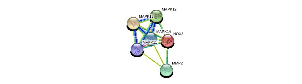 http://string-db.org/version_10/api/image/networkList?limit=0&targetmode=proteins&caller_identity=gene_cards&network_flavor=evidence&identifiers=9606.ENSP00000159060%0d%0a9606.ENSP00000219070%0d%0a9606.ENSP00000215659%0d%0a9606.ENSP00000229794%0d%0a9606.ENSP00000333685%0d%0a9606.ENSP00000211287%0d%0a