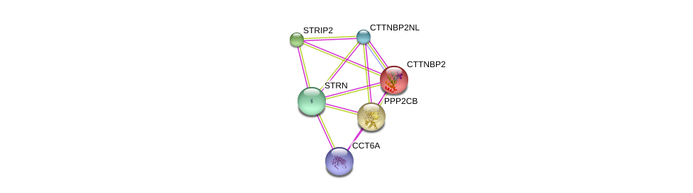 http://string-db.org/version_10/api/image/networkList?limit=0&targetmode=proteins&caller_identity=gene_cards&network_flavor=evidence&identifiers=9606.ENSP00000160373%0d%0a9606.ENSP00000221138%0d%0a9606.ENSP00000249344%0d%0a9606.ENSP00000263918%0d%0a9606.ENSP00000271277%0d%0a9606.ENSP00000275603%0d%0a