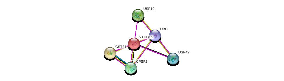 http://string-db.org/version_10/api/image/networkList?limit=0&targetmode=proteins&caller_identity=gene_cards&network_flavor=evidence&identifiers=9606.ENSP00000161863%0d%0a9606.ENSP00000219473%0d%0a9606.ENSP00000344818%0d%0a9606.ENSP00000301962%0d%0a9606.ENSP00000217109%0d%0a9606.ENSP00000298875%0d%0a