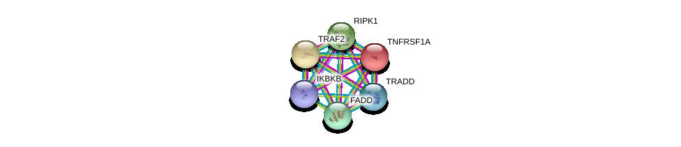 http://string-db.org/version_10/api/image/networkList?limit=0&targetmode=proteins&caller_identity=gene_cards&network_flavor=evidence&identifiers=9606.ENSP00000162749%0d%0a9606.ENSP00000341268%0d%0a9606.ENSP00000259808%0d%0a9606.ENSP00000247668%0d%0a9606.ENSP00000430684%0d%0a9606.ENSP00000301838%0d%0a