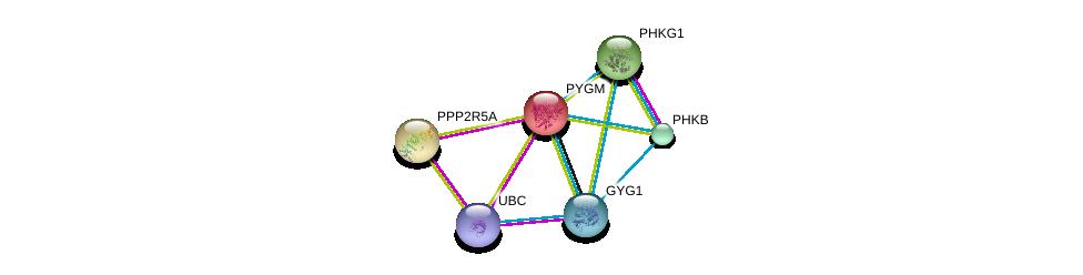 http://string-db.org/version_10/api/image/networkList?limit=0&targetmode=proteins&caller_identity=gene_cards&network_flavor=evidence&identifiers=9606.ENSP00000164139%0d%0a9606.ENSP00000313504%0d%0a9606.ENSP00000340736%0d%0a9606.ENSP00000297373%0d%0a9606.ENSP00000344818%0d%0a9606.ENSP00000261461%0d%0a