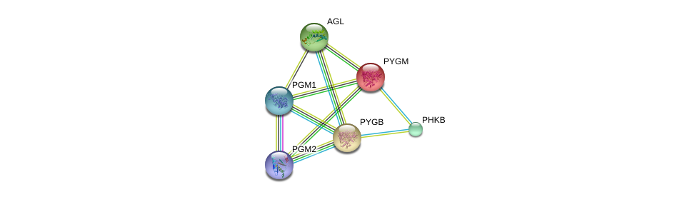 http://string-db.org/version_10/api/image/networkList?limit=0&targetmode=proteins&caller_identity=gene_cards&network_flavor=evidence&identifiers=9606.ENSP00000164139%0d%0a9606.ENSP00000360124%0d%0a9606.ENSP00000294724%0d%0a9606.ENSP00000371393%0d%0a9606.ENSP00000313504%0d%0a9606.ENSP00000216962%0d%0a