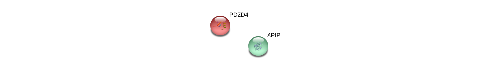 http://string-db.org/version_10/api/image/networkList?limit=0&targetmode=proteins&caller_identity=gene_cards&network_flavor=evidence&identifiers=9606.ENSP00000164640%0d%0a9606.ENSP00000379133%0d%0a
