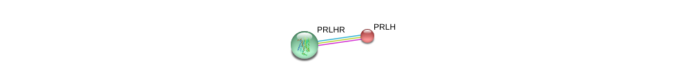 http://string-db.org/version_10/api/image/networkList?limit=0&targetmode=proteins&caller_identity=gene_cards&network_flavor=evidence&identifiers=9606.ENSP00000165524%0d%0a9606.ENSP00000239032%0d%0a