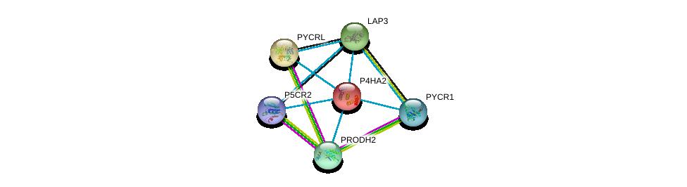 http://string-db.org/version_10/api/image/networkList?limit=0&targetmode=proteins&caller_identity=gene_cards&network_flavor=evidence&identifiers=9606.ENSP00000166534%0d%0a9606.ENSP00000301175%0d%0a9606.ENSP00000328858%0d%0a9606.ENSP00000226299%0d%0a9606.ENSP00000220966%0d%0a9606.ENSP00000414068%0d%0a