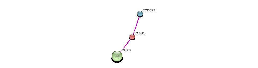 http://string-db.org/version_10/api/image/networkList?limit=0&targetmode=proteins&caller_identity=gene_cards&network_flavor=evidence&identifiers=9606.ENSP00000167106%0d%0a9606.ENSP00000361599%0d%0a9606.ENSP00000210060%0d%0a