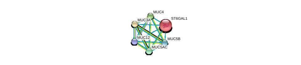 http://string-db.org/version_10/api/image/networkList?limit=0&targetmode=proteins&caller_identity=gene_cards&network_flavor=evidence&identifiers=9606.ENSP00000169298%0d%0a9606.ENSP00000436812%0d%0a9606.ENSP00000441929%0d%0a9606.ENSP00000417498%0d%0a9606.ENSP00000435591%0d%0a9606.ENSP00000324834%0d%0a