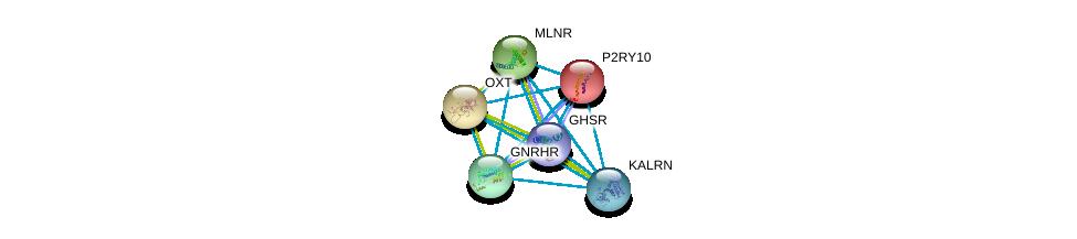 http://string-db.org/version_10/api/image/networkList?limit=0&targetmode=proteins&caller_identity=gene_cards&network_flavor=evidence&identifiers=9606.ENSP00000171757%0d%0a9606.ENSP00000217386%0d%0a9606.ENSP00000218721%0d%0a9606.ENSP00000226413%0d%0a9606.ENSP00000240874%0d%0a9606.ENSP00000241256%0d%0a