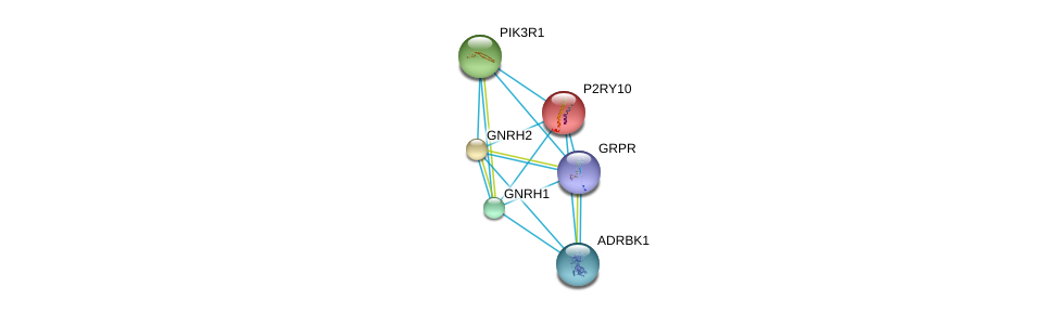 http://string-db.org/version_10/api/image/networkList?limit=0&targetmode=proteins&caller_identity=gene_cards&network_flavor=evidence&identifiers=9606.ENSP00000171757%0d%0a9606.ENSP00000312262%0d%0a9606.ENSP00000274335%0d%0a9606.ENSP00000369643%0d%0a9606.ENSP00000276414%0d%0a9606.ENSP00000245983%0d%0a
