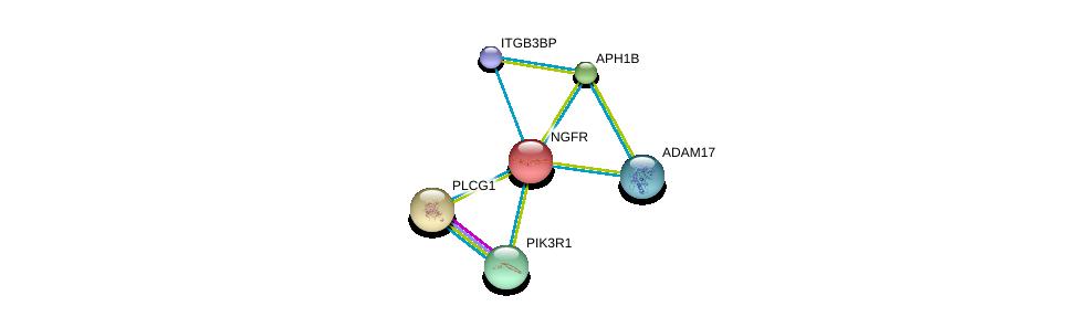 http://string-db.org/version_10/api/image/networkList?limit=0&targetmode=proteins&caller_identity=gene_cards&network_flavor=evidence&identifiers=9606.ENSP00000172229%0d%0a9606.ENSP00000274335%0d%0a9606.ENSP00000360133%0d%0a9606.ENSP00000309968%0d%0a9606.ENSP00000261879%0d%0a9606.ENSP00000244007%0d%0a