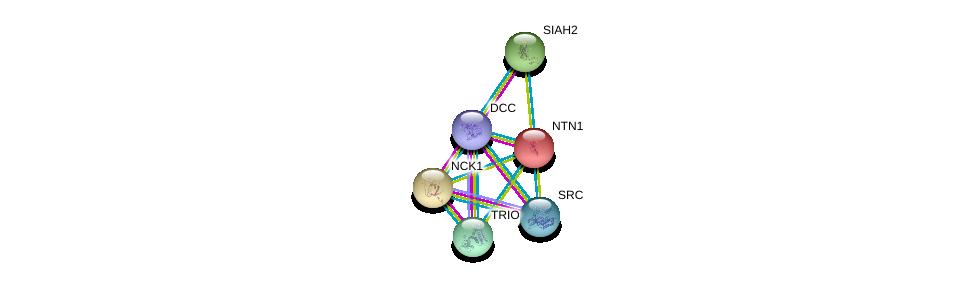 http://string-db.org/version_10/api/image/networkList?limit=0&targetmode=proteins&caller_identity=gene_cards&network_flavor=evidence&identifiers=9606.ENSP00000173229%0d%0a9606.ENSP00000389140%0d%0a9606.ENSP00000339299%0d%0a9606.ENSP00000350941%0d%0a9606.ENSP00000288986%0d%0a9606.ENSP00000322457%0d%0a