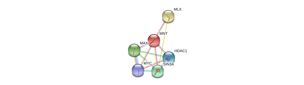 http://string-db.org/version_10/api/image/networkList?limit=0&targetmode=proteins&caller_identity=gene_cards&network_flavor=evidence&identifiers=9606.ENSP00000174618%0d%0a9606.ENSP00000351490%0d%0a9606.ENSP00000246912%0d%0a9606.ENSP00000367207%0d%0a9606.ENSP00000353622%0d%0a9606.ENSP00000362649%0d%0a