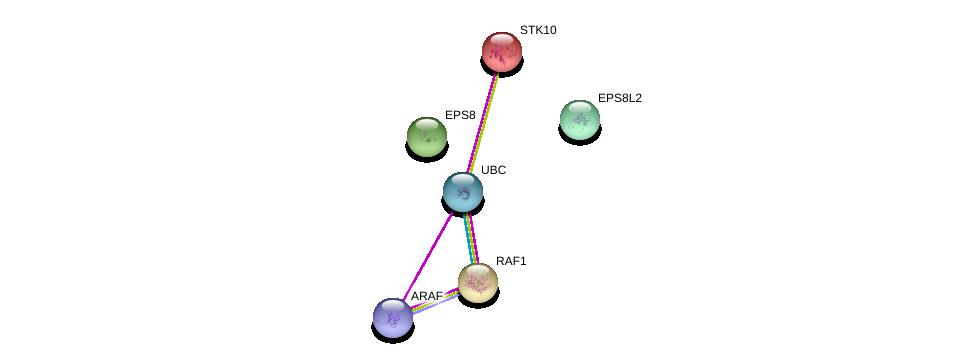 http://string-db.org/version_10/api/image/networkList?limit=0&targetmode=proteins&caller_identity=gene_cards&network_flavor=evidence&identifiers=9606.ENSP00000176763%0d%0a9606.ENSP00000344818%0d%0a9606.ENSP00000281172%0d%0a9606.ENSP00000320828%0d%0a9606.ENSP00000251849%0d%0a9606.ENSP00000366244%0d%0a