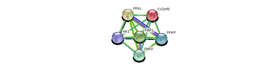 http://string-db.org/version_10/api/image/networkList?limit=0&targetmode=proteins&caller_identity=gene_cards&network_flavor=evidence&identifiers=9606.ENSP00000179259%0d%0a9606.ENSP00000384774%0d%0a9606.ENSP00000370517%0d%0a9606.ENSP00000364475%0d%0a9606.ENSP00000269848%0d%0a9606.ENSP00000364486%0d%0a